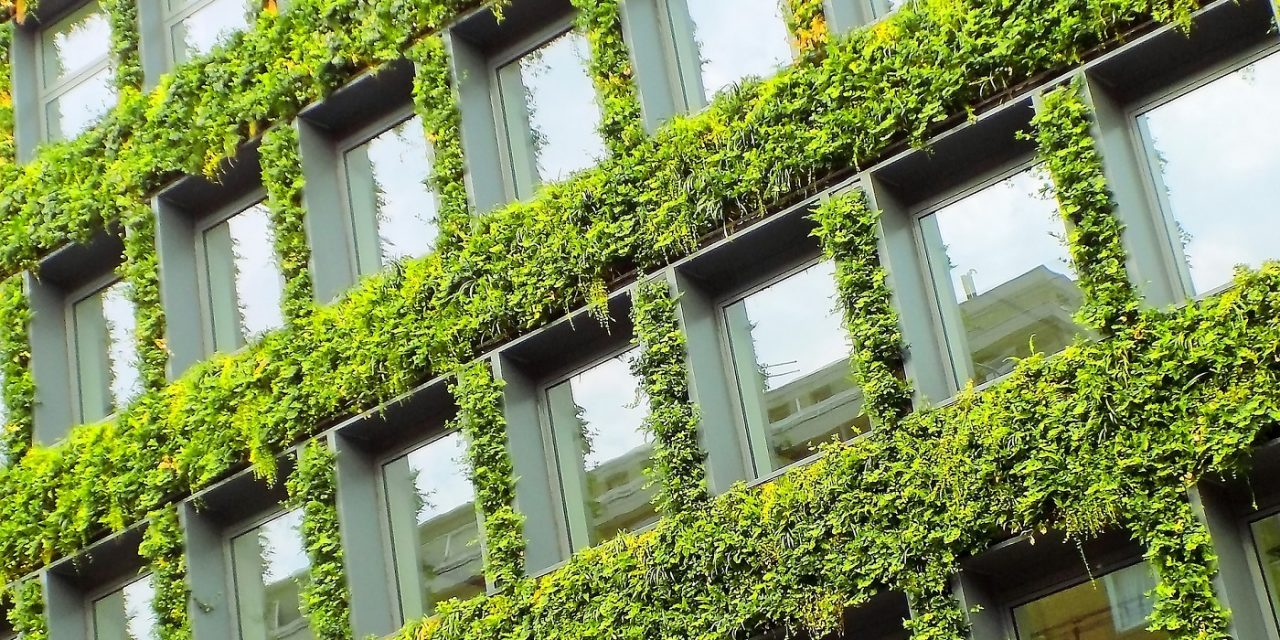 WHY BUILD GREEN? Infographic explaining green building's many benefits
