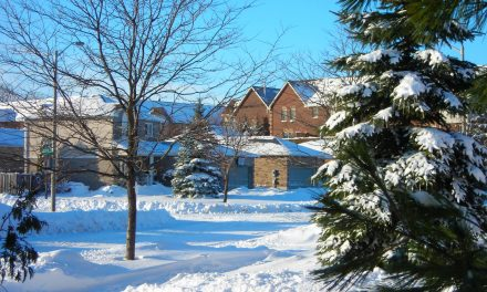 Canadian homeowners and the domicile [infographic]