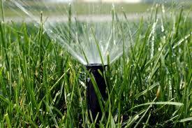 Next Rain Irrigation Ltd.