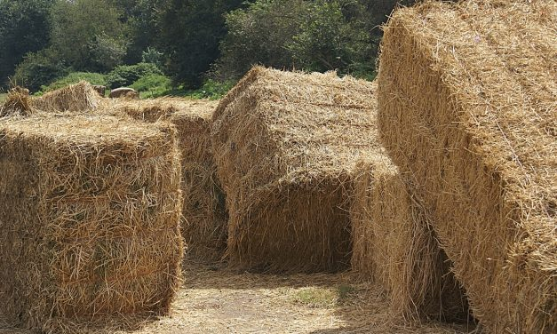 A 2-Storey Load-Bearing Straw Bale House Built by Women [video]