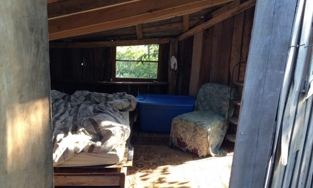 A Home Made Solely of Local or Reclaimed Materials [video]