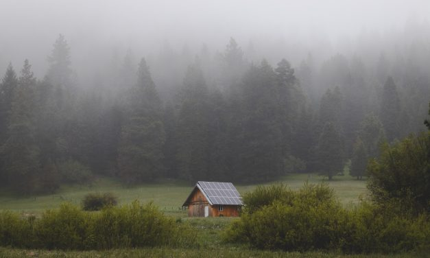 Reduce That Carbon Footprint: The Rise of Eco Homes
