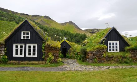 A Guide to Green Roofs: The Lowdown on Types, Components and Advantages