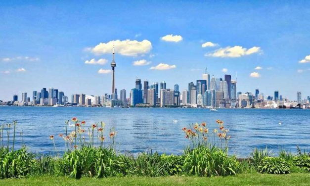 4 Ways Toronto Residents Can Contribute to the City's Ongoing Green Efforts